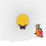 Death Sentence: PANDA!, Insects Awaken
