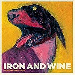 Iron and Wine pic