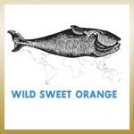 Wild Sweet Orange, The Whale EP
