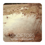Rooftops, A Forest of Polarity